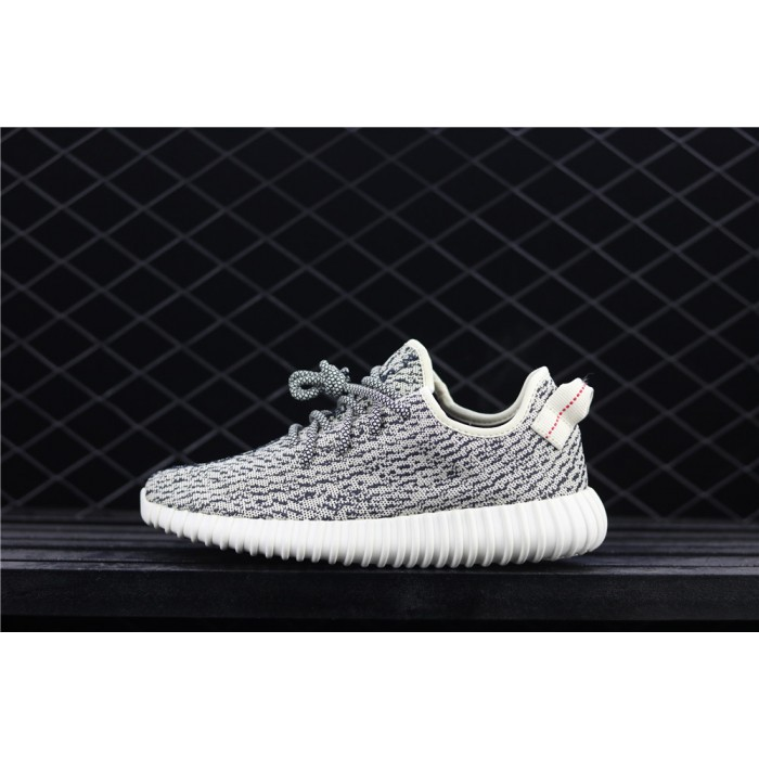 Adidas Yeezy Boost 350 Basf Shoe In Black Grey